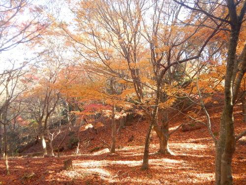 小豆島33.jpg