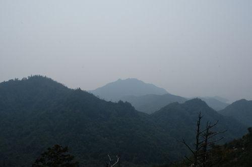 宮島追悼登山18.jpg