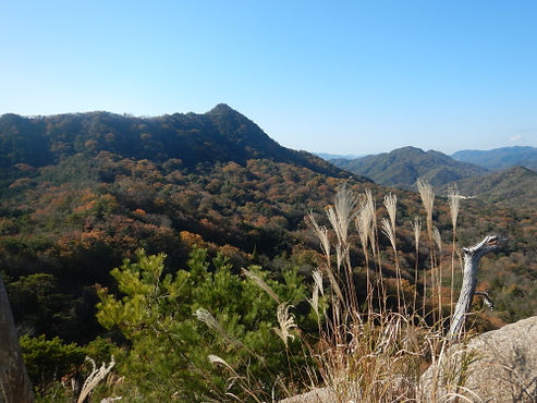 竜ヶ岳HP10.jpg