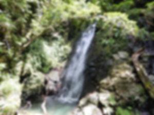 HP東鳳翩山15.jpg
