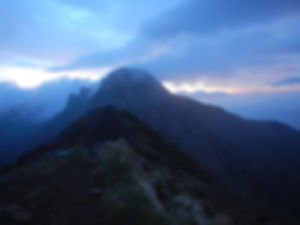 八ヶ岳HP0460.jpg