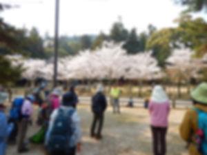 宮島追悼登山03.jpg