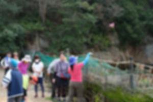 宮島追悼登山24.jpg