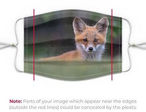 Fox green.jpg
