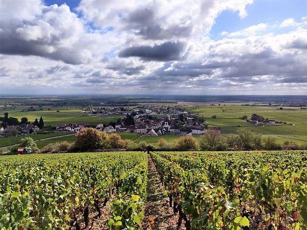 Bourgogne Côte.jpg