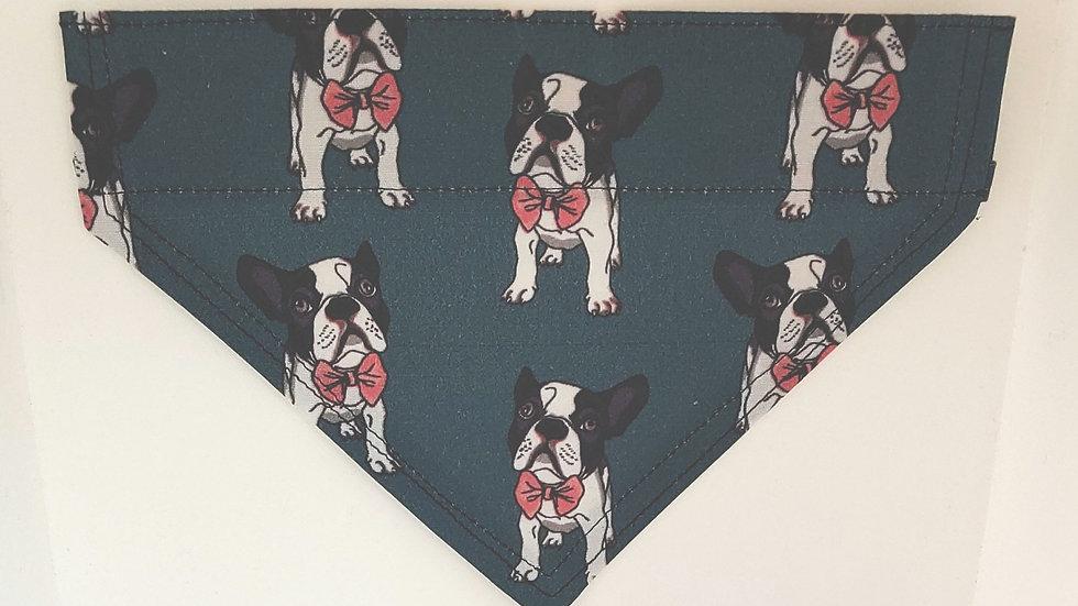 Small Dog bandana in a Boston Terrier print