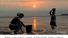 She sells seashells: the women who harvest shellfish