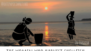 She sells seashells: the women who harvest shellfish
