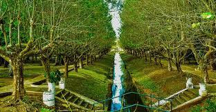 Parque_das_águas_-_Chalés_de_Minas.jpe