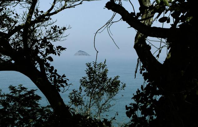 Ilha Afeto