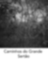 Caminhos_do_Grande_Sertão.jpg