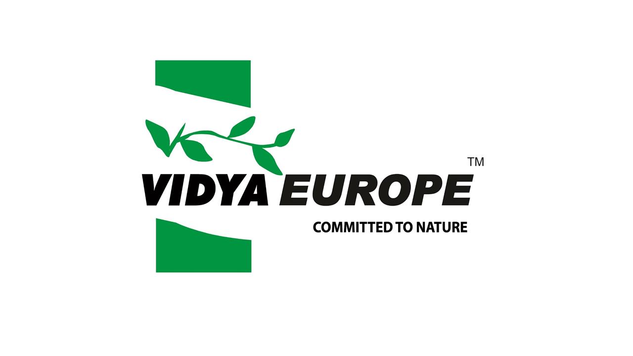 LogoVidyaEurope