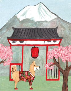Shiba Inu in Japan