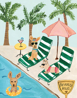 Chihuahuas at Pool