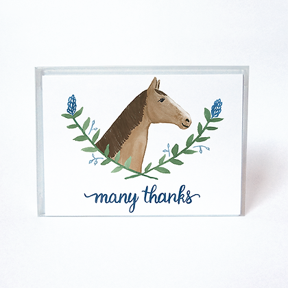 Horse Boxed Thank You Cards