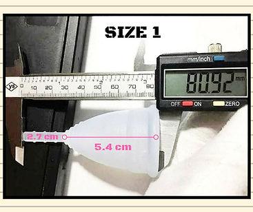 Biointimo Aqua-Tampon Size 1