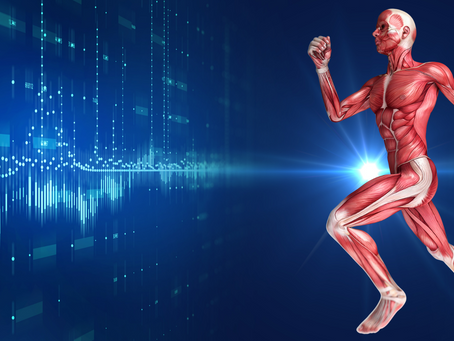 The Hardware & Software of Movement