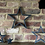 Thumbnail: Outline Stars Set of 4