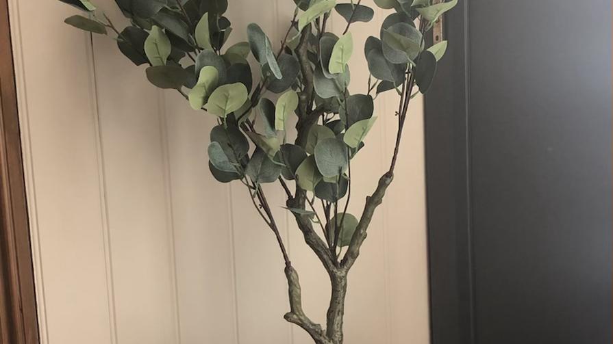 Eucalyptus Potted Tree 130cm