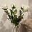 Thumbnail: Traditional White Rose Stem