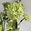 Thumbnail: Green Viburnum Spray