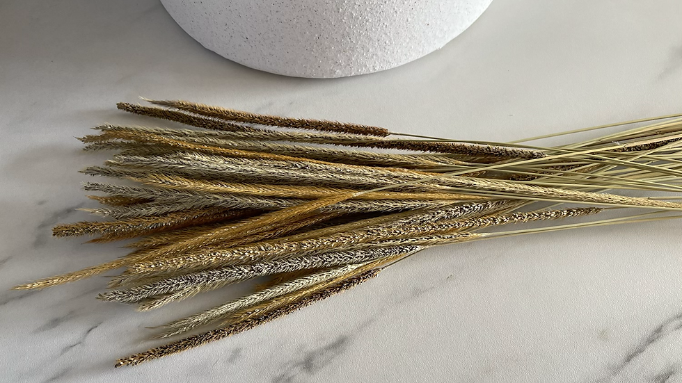50 Dried Long-stemmed Mixed Grasses