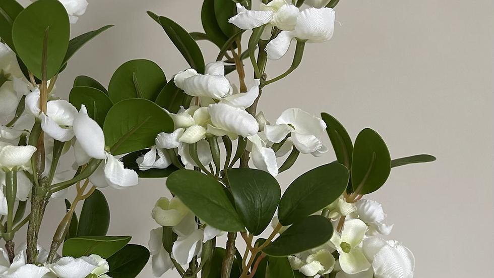 White Mock Orange Flower Stem
