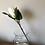 Thumbnail: Faux Closed White Protea