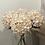 Thumbnail: Autumn White Hydrangea