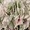 Thumbnail: Green Hydrangea Spray - Large
