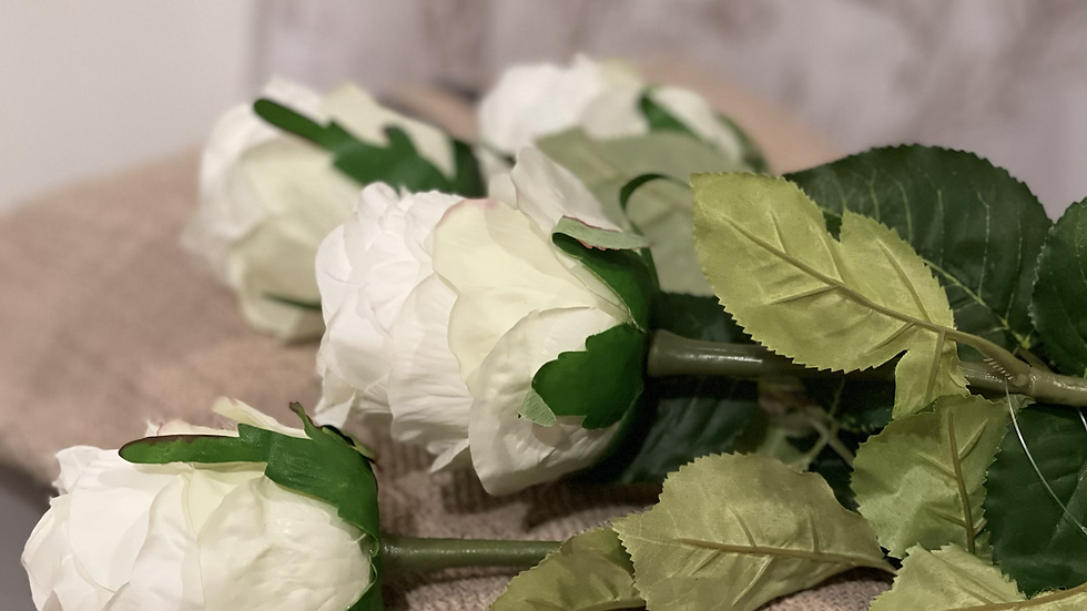 Traditional White Rose Stem