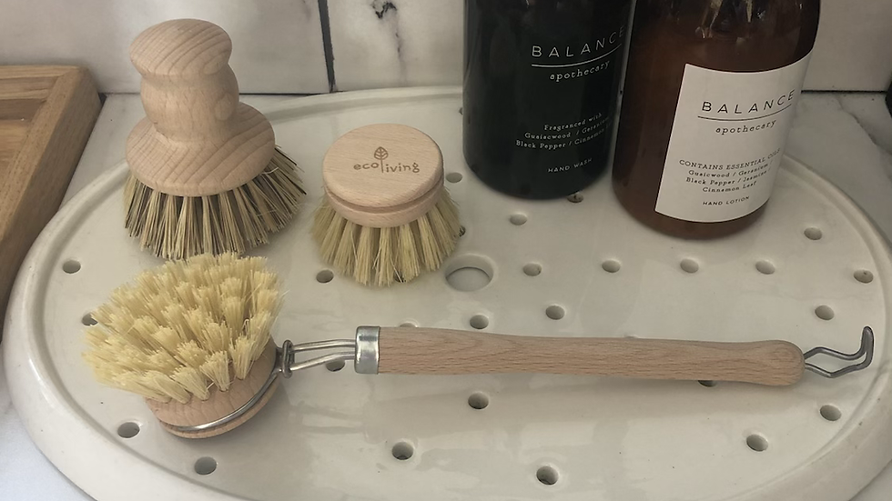 EcoLiving Replacement Brush Head