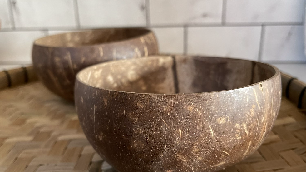 Pair of Coconut Bowls