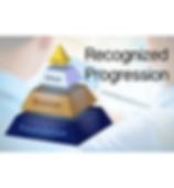 ISO 18788 Recognized progression