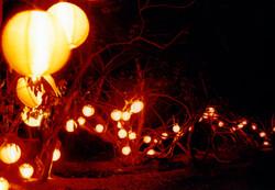 Lantern Footsteps.