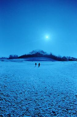Moonlight Walkers