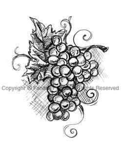 grapes gr