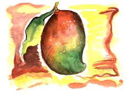 mango SCAN 4-B