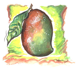mango SCAN 2