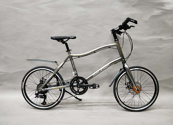 "20"" Raleigh Mini Velo Bicycle"