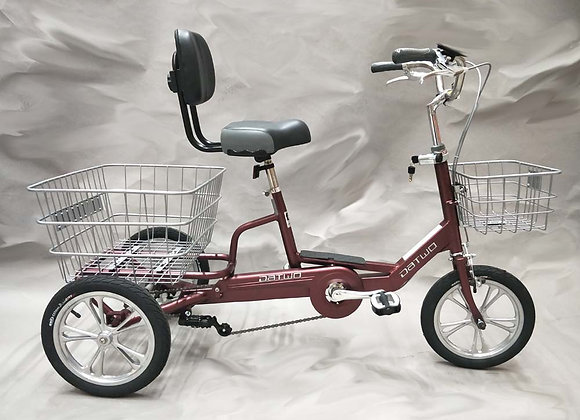 """14"""" Tricycle"""