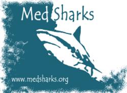 MEDFEVER BY MEDSHARKS