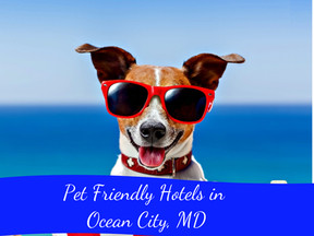 Pet Friendly Hotels in Ocean City, Maryland.