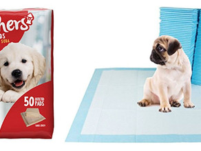 Free PetsWorld Training & Potty Pads + Pet Waste Bags