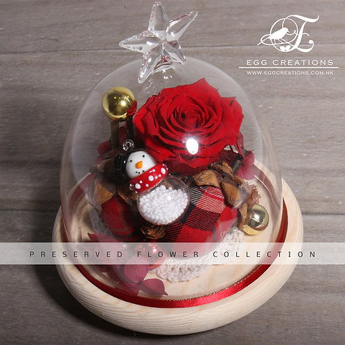 Christmas Dutch Rose in Glass Jar