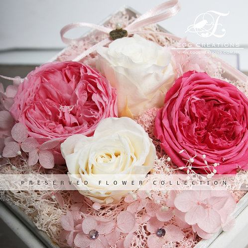 Preserved Roses and Garden Rose in Display Box