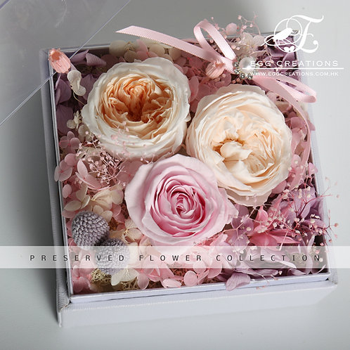 Pastel pink roses trio in acrylic display box