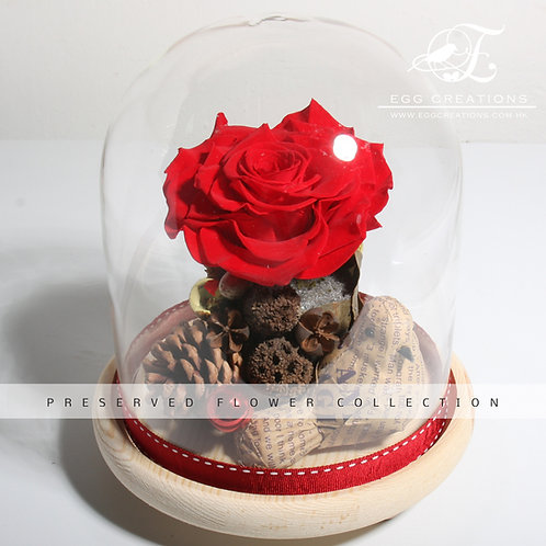 Christmas Preserved Dutch Rose with paper bird in glass jar