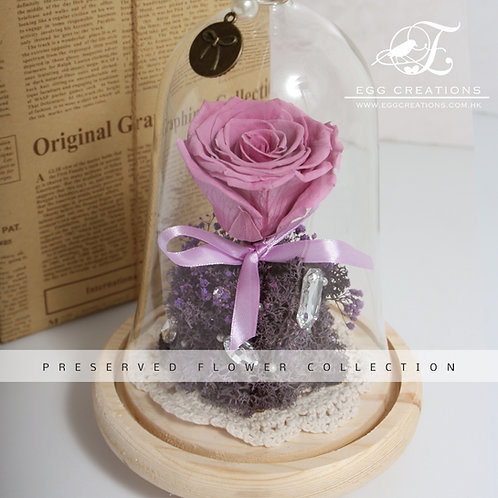 Single Preserved Rose in Bell Glass Jar