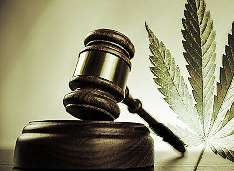 New CBD Regulations in South Africa